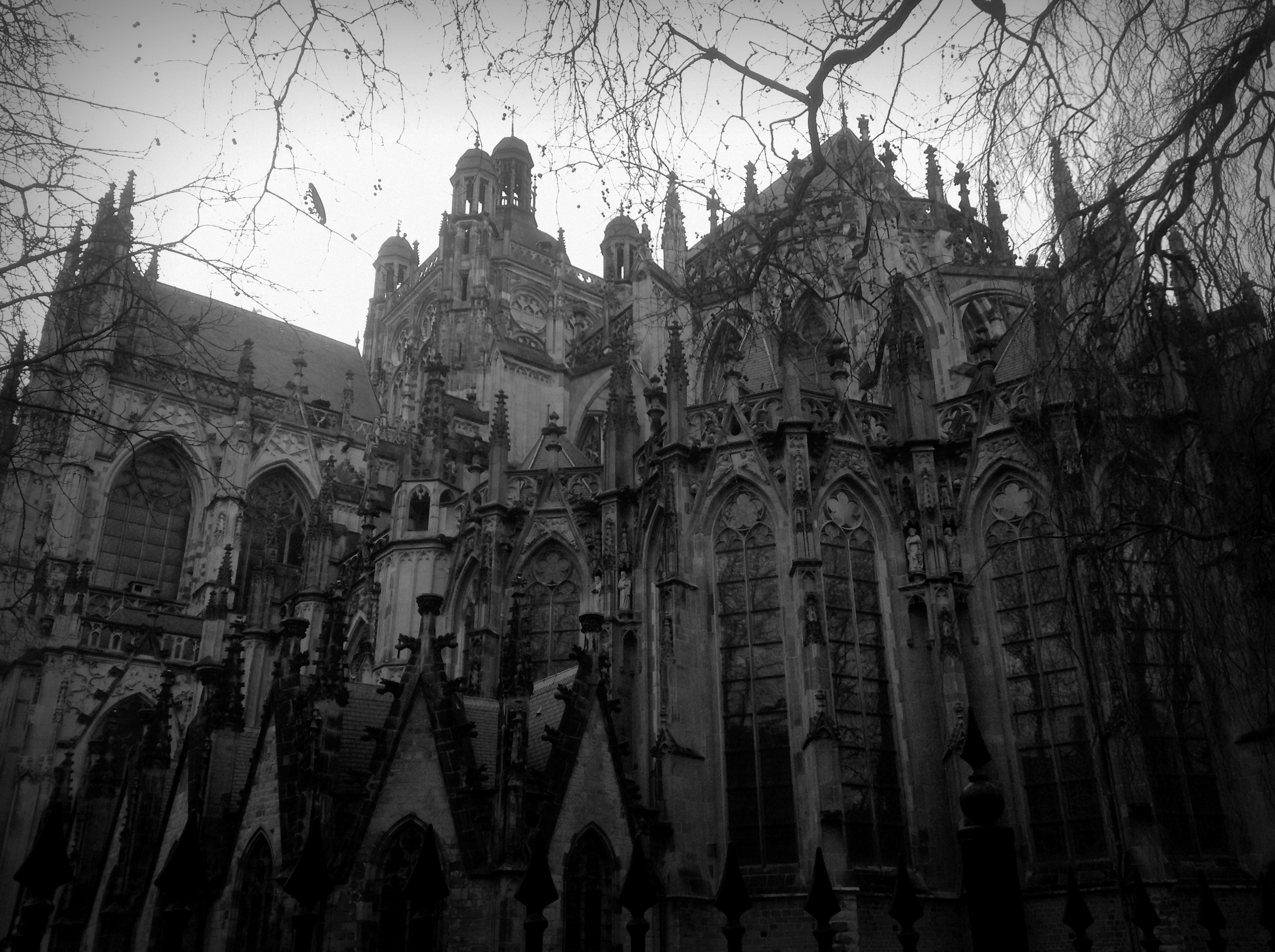 St.-Johannes-Kathedrale ('s-Hertogenbosch) (Foto: Theresa Arlt)